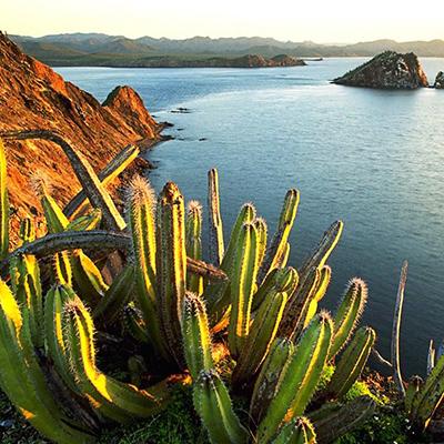 Cancun to Antigua
